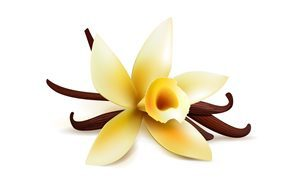 Massage Hawïen Massage Lomi Lomi